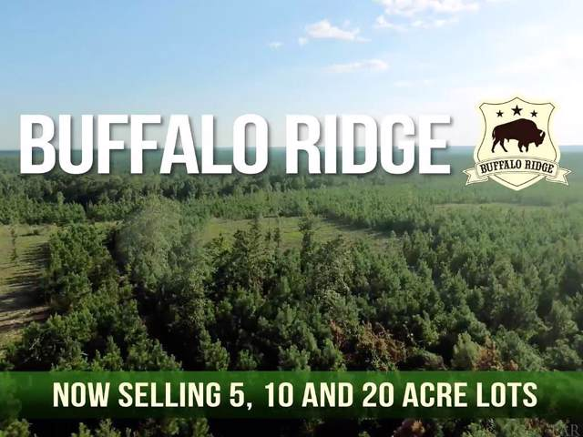 Lot 2A MBN Skyfall Dr, Pace, FL 32571 (MLS #561064) :: Levin Rinke Realty