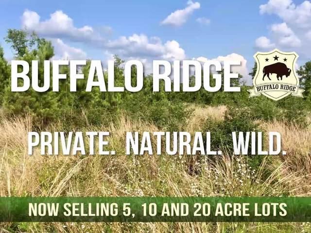Lot 39 BR Buffalo Ridge Rd, Pace, FL 32571 (MLS #561316) :: ResortQuest Real Estate
