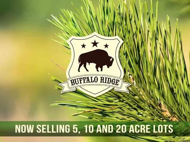 Lot 71 BR Buffalo Ridge Rd, Pace, FL 32571 (MLS #561873) :: ResortQuest Real Estate