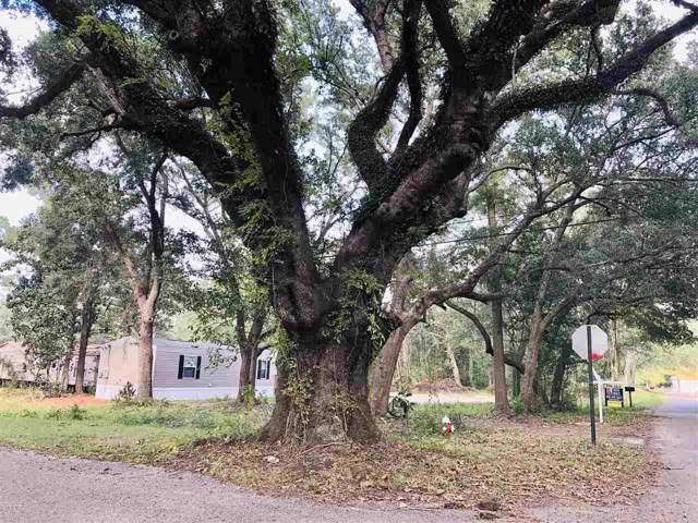 6200 Brosnaham Ave, Pensacola, FL 32503 (MLS #563243) :: Levin Rinke Realty