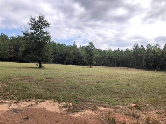Hidden Forest Trail, Pace, FL 32571 (MLS #563424) :: Levin Rinke Realty