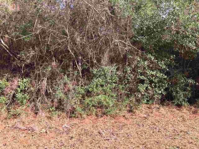 000 E Erin Pond, Seminole, AL 36574 (MLS #564279) :: Levin Rinke Realty