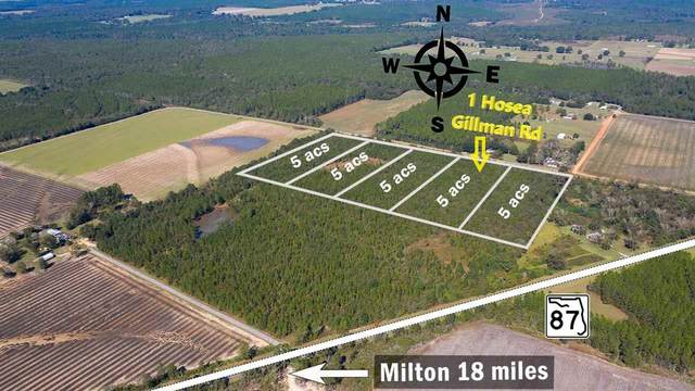 1 Hosea Gillman Rd, Milton, FL 32570 (MLS #570634) :: ResortQuest Real Estate