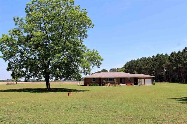 11790 Hwy 87, Jay, FL 32565 (MLS #571601) :: ResortQuest Real Estate