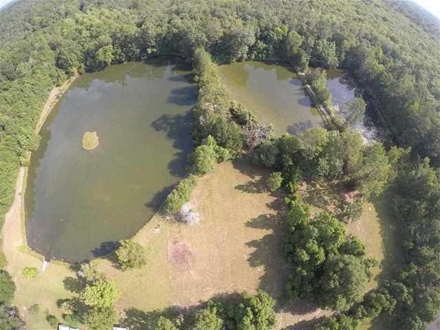 750 Barth Rd, Molino, FL 32577 (MLS #571758) :: Levin Rinke Realty