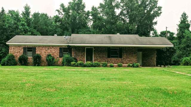 783 County Rd 28, CHATOM, AL 36518 (MLS #574716) :: Connell & Company Realty, Inc.