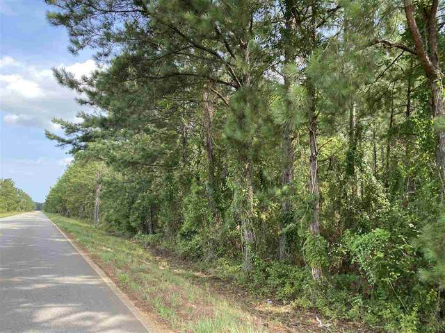 1 Booneville Rd, Atmore, AL 36502 (MLS #576539) :: Levin Rinke Realty