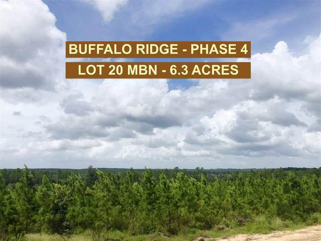 Lot 20 MBN Molino Bridge Rd, Pace, FL 32571 (MLS #577741) :: Connell & Company Realty, Inc.