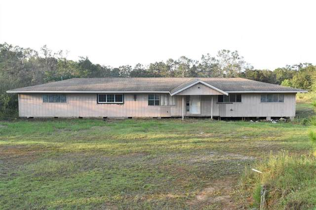 60 Andalusa Rd, Cantonment, FL 32533 (MLS #579011) :: Levin Rinke Realty