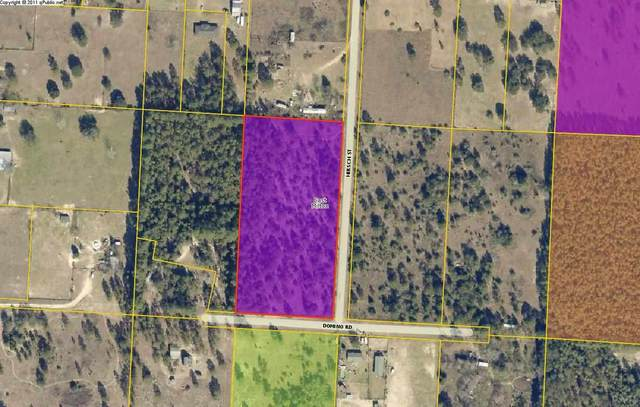 9718 Domino Rd, Milton, FL 32583 (MLS #581633) :: Connell & Company Realty, Inc.