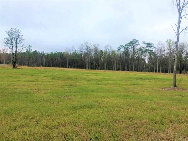 4 Hwy 31, Flomaton, AL 36441 (MLS #581644) :: Connell & Company Realty, Inc.