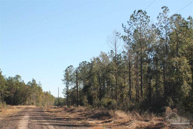 Lot 11 & 12 Forest Hills Dr, Milton, FL 32570 (MLS #582933) :: Coldwell Banker Coastal Realty
