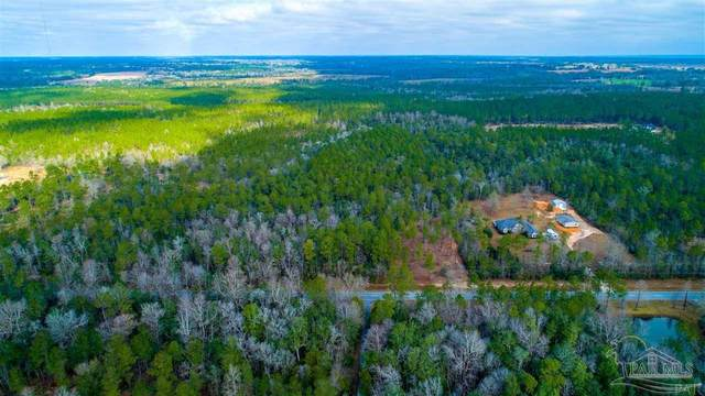3550 Hwy 196, Molino, FL 32577 (MLS #583096) :: Connell & Company Realty, Inc.