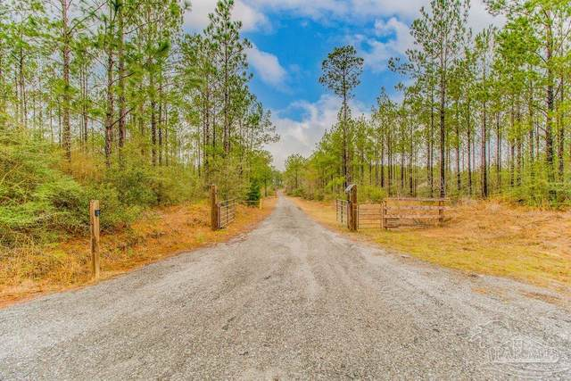 2018 Big Sky Dr, Pace, FL 32571 (MLS #584411) :: Connell & Company Realty, Inc.
