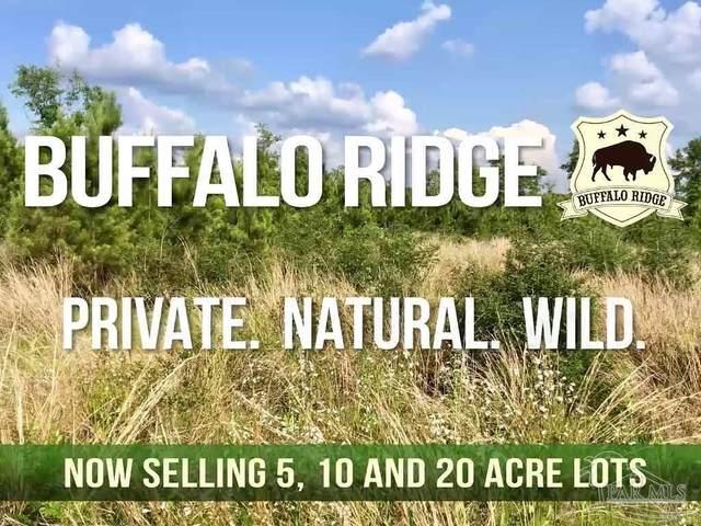 102 Buffalo Ridge Rd, Pace, FL 32571 (MLS #584593) :: Crye-Leike Gulf Coast Real Estate & Vacation Rentals