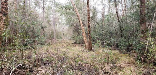 Lot 39 Arbor Ridge Rd, Pace, FL 32571 (MLS #585278) :: Connell & Company Realty, Inc.