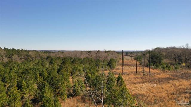 1 Old Atmore Rd, Flomaton, AL 36441 (MLS #585466) :: Connell & Company Realty, Inc.
