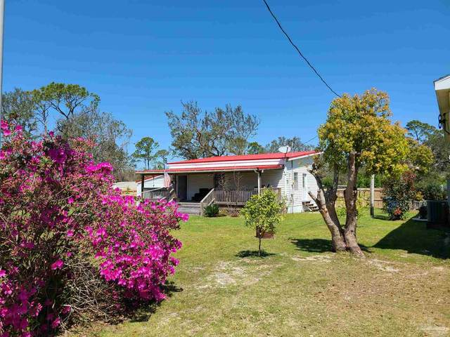 5328 Florida Ave, Orange Beach, AL 36561 (MLS #586714) :: Coldwell Banker Coastal Realty