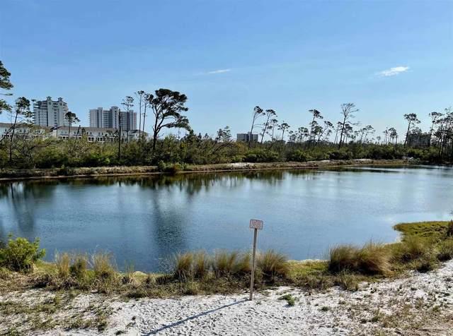 14569 Salt Meadow Dr, Pensacola, FL 32507 (MLS #587923) :: Levin Rinke Realty