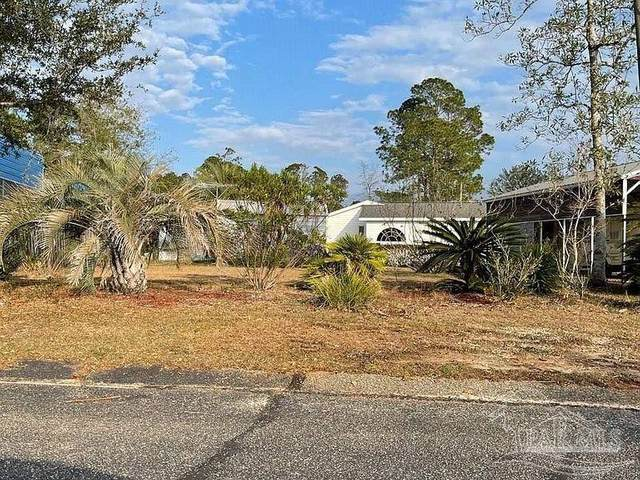80 Horn Rd, Lillian, AL 36549 (MLS #588960) :: Connell & Company Realty, Inc.