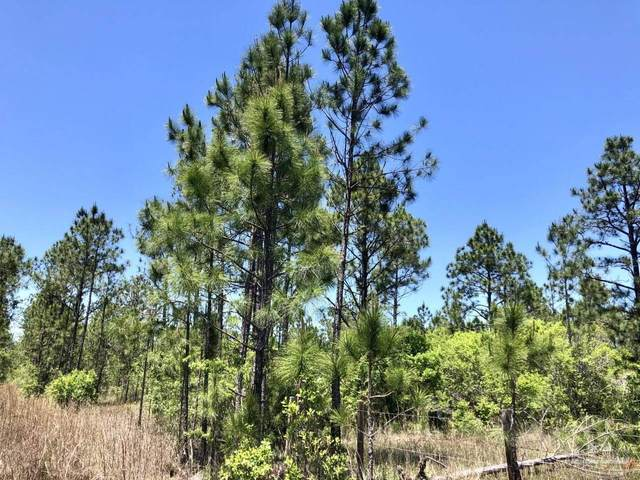 0 Saragon Ln, Milton, FL 32583 (MLS #589336) :: Coldwell Banker Coastal Realty