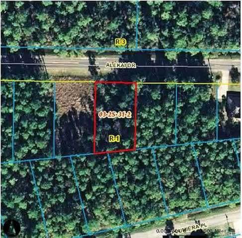 9331 Alekai Dr, Pensacola, FL 32526 (MLS #591077) :: Connell & Company Realty, Inc.