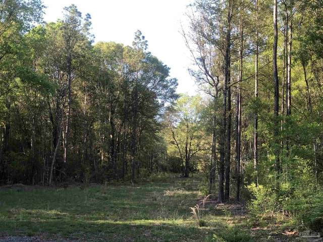1 Johnny Parker Rd, Harold, FL 32564 (MLS #591683) :: Connell & Company Realty, Inc.