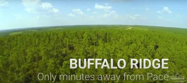 lot 62 Buffalo Ridge Rd, Pace, FL 32571 (MLS #591855) :: Levin Rinke Realty