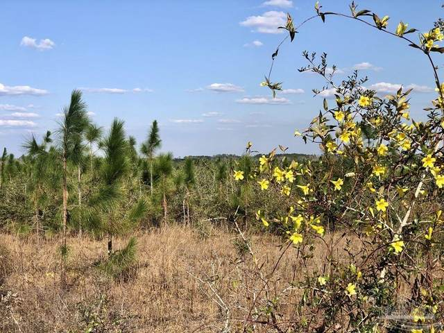 Lot 11-SW Gin Rd, Pace, FL 32571 (MLS #591897) :: Connell & Company Realty, Inc.