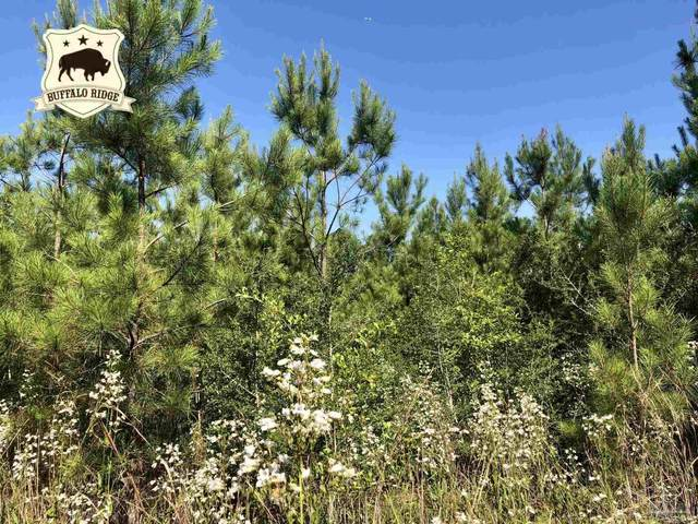 Lot 16 BS Buffalo Ridge Rd, Pace, FL 32571 (MLS #592602) :: Connell & Company Realty, Inc.