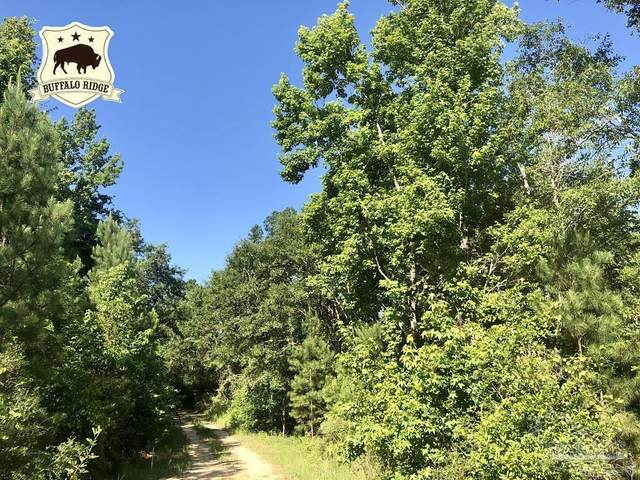 Lot 18 BS Buffalo Ridge Rd, Pace, FL 32571 (MLS #592604) :: Connell & Company Realty, Inc.