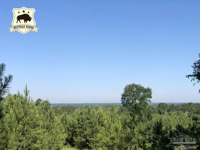 Lot 27 BS Buffalo Ridge Rd, Pace, FL 32571 (MLS #592624) :: Connell & Company Realty, Inc.