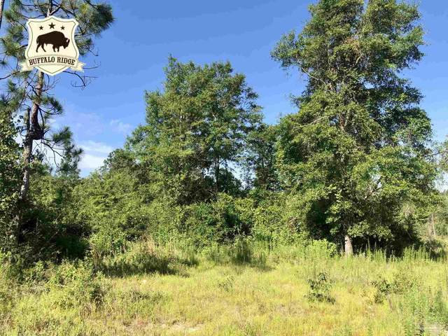 Lot 24 BS Buffalo Ridge Rd, Pace, FL 32571 (MLS #592625) :: Connell & Company Realty, Inc.