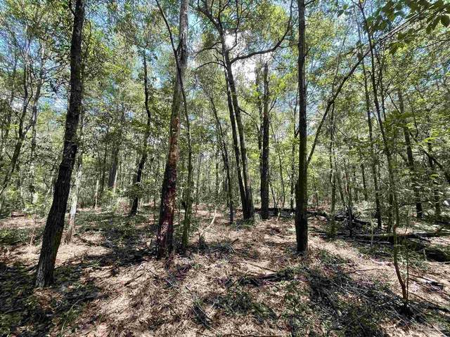 00 Hwy 4, Jay, FL 32565 (MLS #593703) :: Connell & Company Realty, Inc.