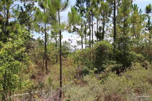 16303 Tarpon Dr, Pensacola, FL 32507 (MLS #594156) :: Levin Rinke Realty