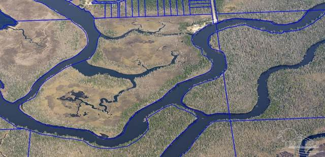 8188 Fish Camp Rd, Milton, FL 32583 (MLS #594187) :: Levin Rinke Realty