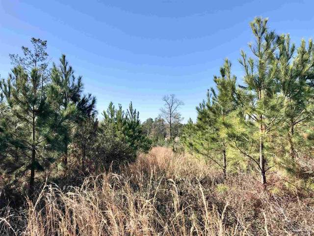 Lot 20 BR Buffalo Ridge Rd, Pace, FL 32571 (MLS #594371) :: Connell & Company Realty, Inc.