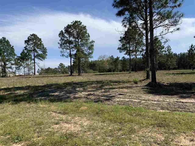 000 American Farms Rd, Milton, FL 32583 (MLS #550777) :: ResortQuest Real Estate