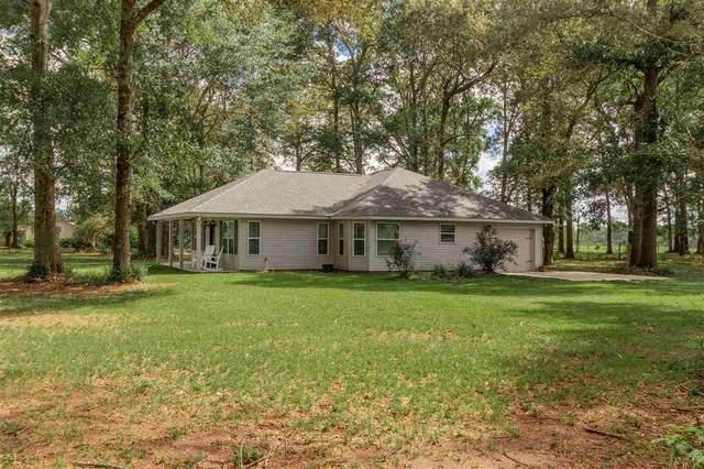 3382 Hazel Godwin Rd, Jay, FL 32565 (MLS #573374) :: ResortQuest Real Estate