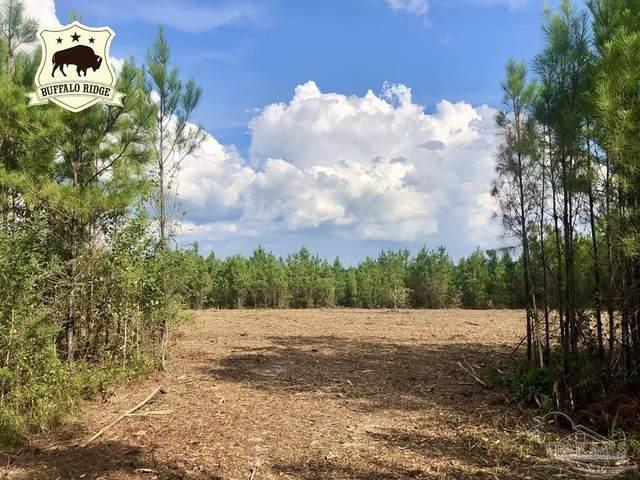 Lot 14 BS Buffalo Ridge Rd, Pace, FL 32571 (MLS #592599) :: Levin Rinke Realty