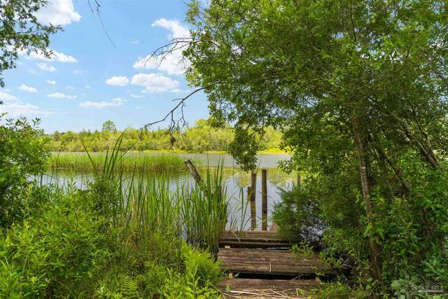 0000 Obie Willis Rd, Milton, FL 32570 (MLS #593247) :: Coldwell Banker Coastal Realty