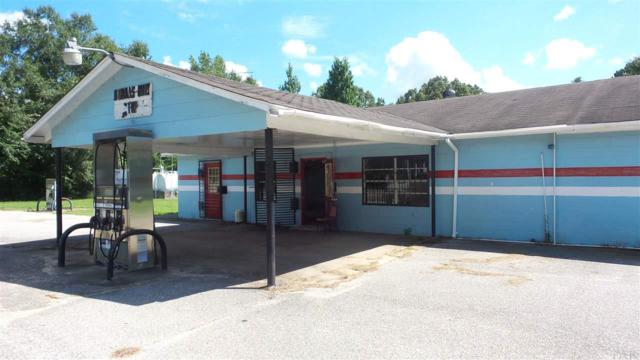 72620 State Highway 59, LITTLE RIVER, AL 36550 (MLS #505329) :: Levin Rinke Realty