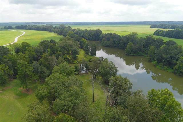 22 Jimmy Phillips Rd Lot #22, Greensboro, AL 36744 (MLS #564696) :: Connell & Company Realty, Inc.