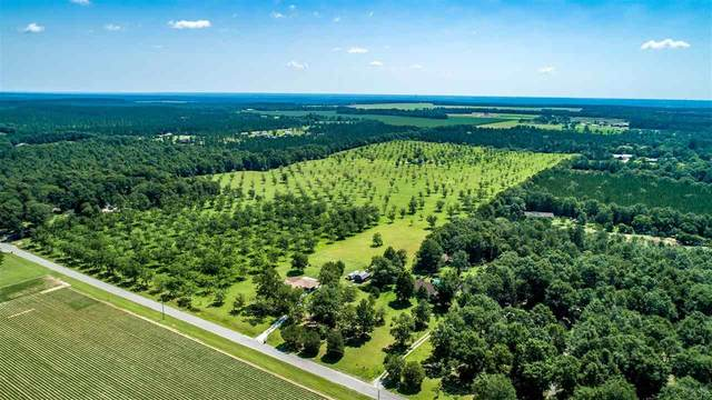 7600 Sunshine Hill Rd, Molino, FL 32577 (MLS #573009) :: Levin Rinke Realty
