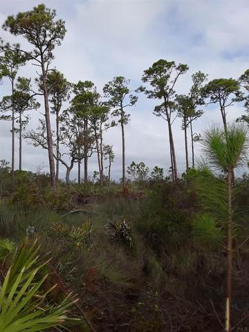 5971 Red Cedar St, Pensacola, FL 32507 (MLS #580348) :: Connell & Company Realty, Inc.