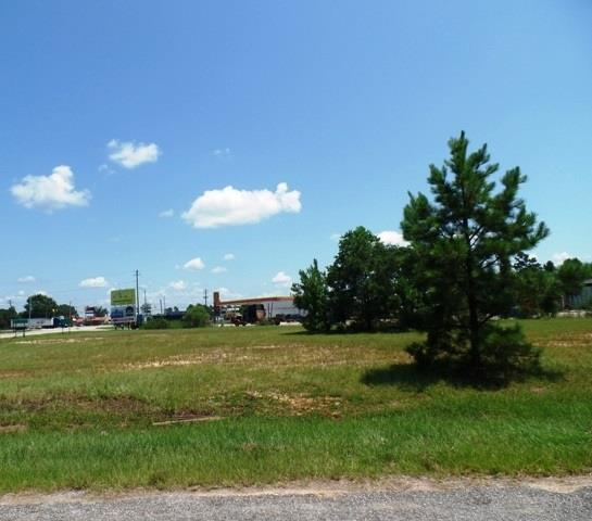 87 W Hwy 84, MONROEVILLE, AL 36460 (MLS #504176) :: Coldwell Banker Coastal Realty