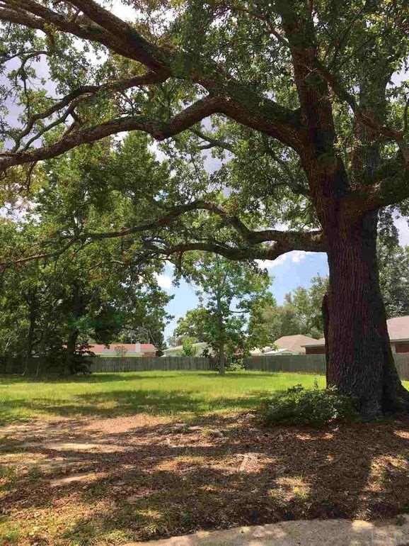 1417 Hatton St, Pensacola, FL 32503 (MLS #520113) :: Levin Rinke Realty