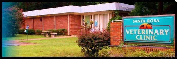 6709 North Ave, Milton, FL 32570 (MLS #521440) :: ResortQuest Real Estate
