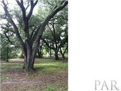 651 Warner Ave, Pensacola, FL 32514 (MLS #522745) :: Levin Rinke Realty