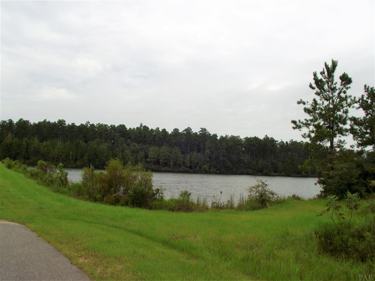 0 Lake Juniper Rd - Photo 1